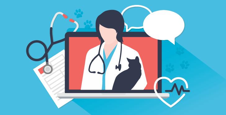 Veterinary Telemedicine Pet Telehealth K9
